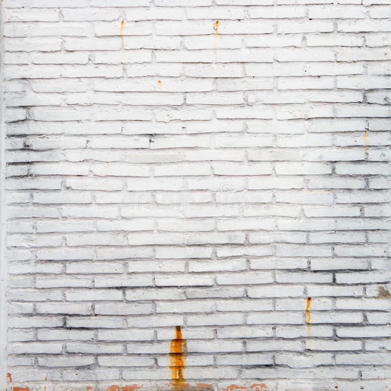 A white brick wall stock image