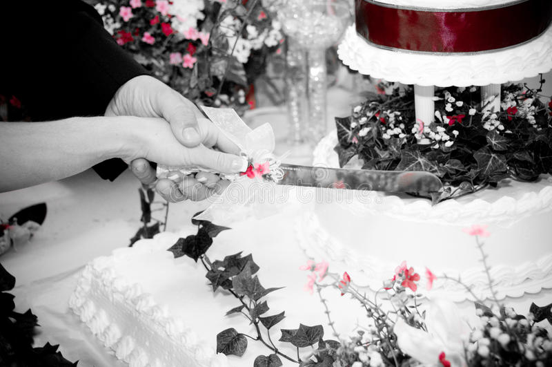 Download White Bride stock photo. Image of knife, posing, female - 10061196