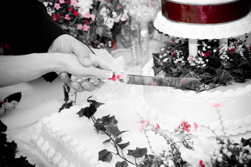 White Bride royalty free stock image