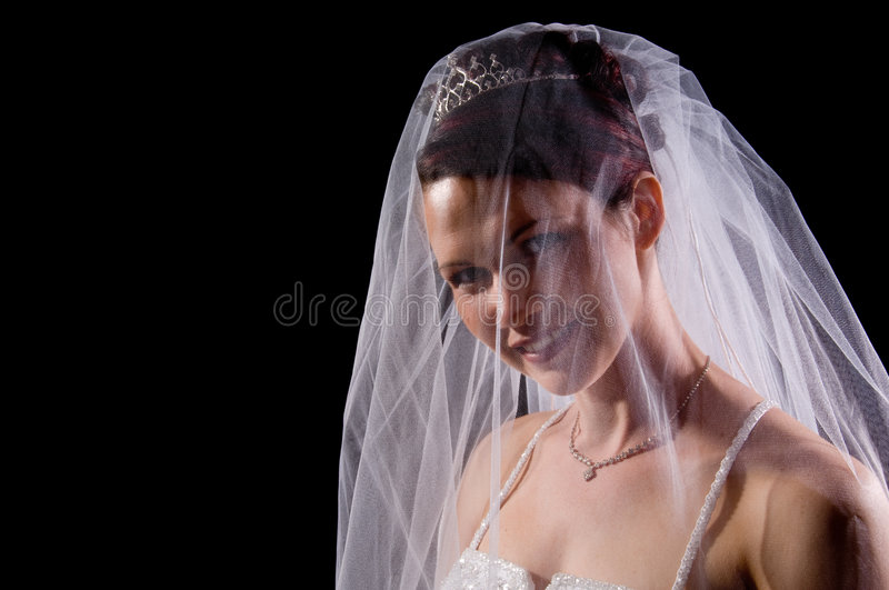 White Bride. At her wedding posing with veil royalty free stock image