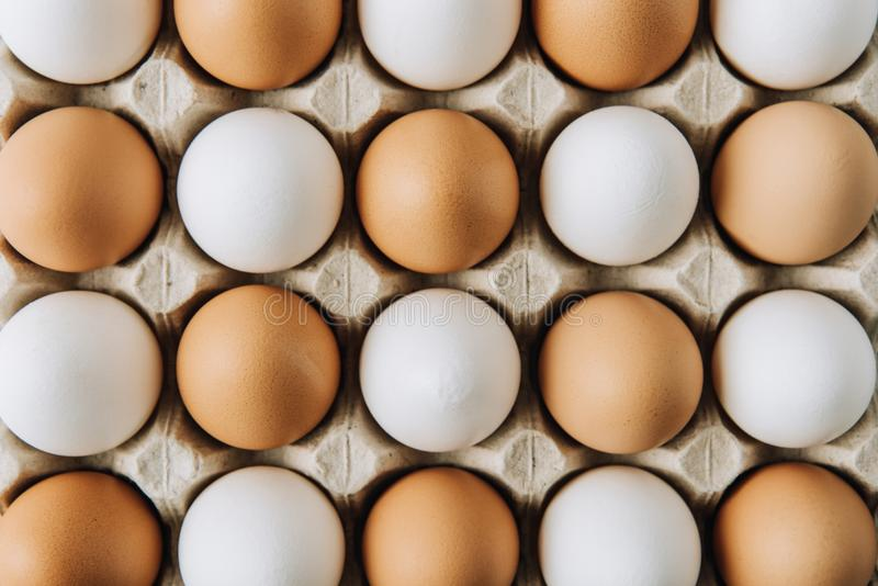 White and brown eggs laying in egg carton, full frame shot royalty free stock photography
