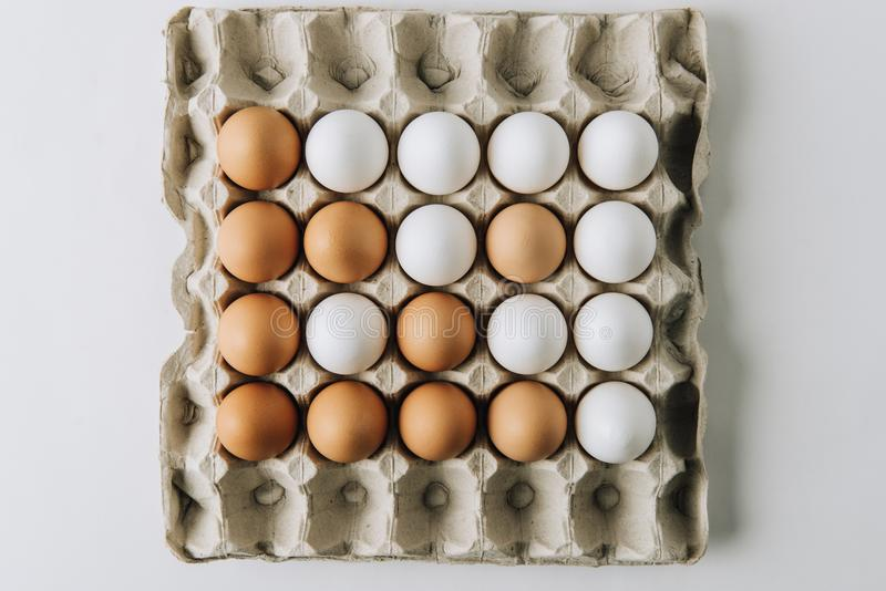 White and brown eggs laying in egg carton on white. Background royalty free stock photos