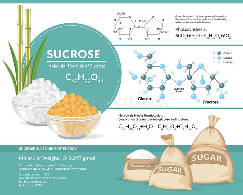 White and brown sugar cubes in bowls. Structural chemical formula and model of sucrose royalty free illustration