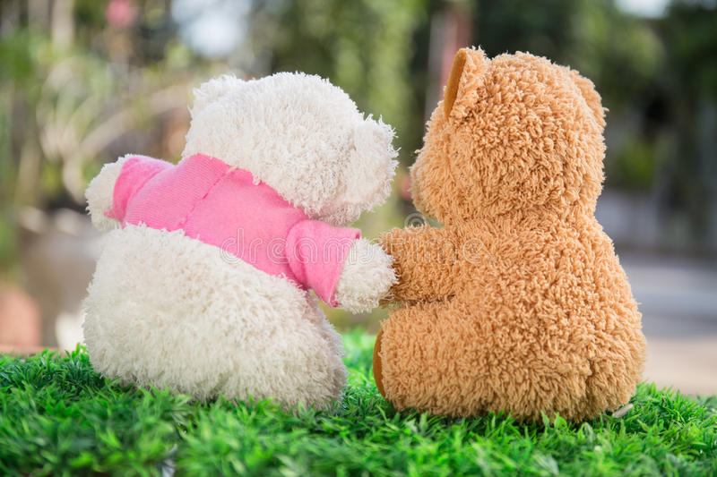 White and brown teddy bear stock image