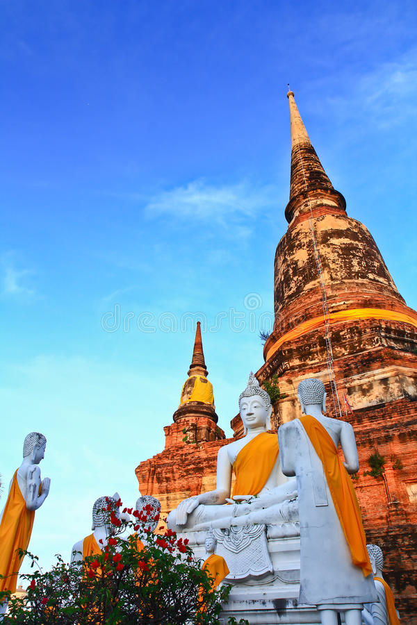 White buddha statues and ancient pagoda. Structure at Wat Yaichaimongkol in Ayutthaya province of Thailand stock photo