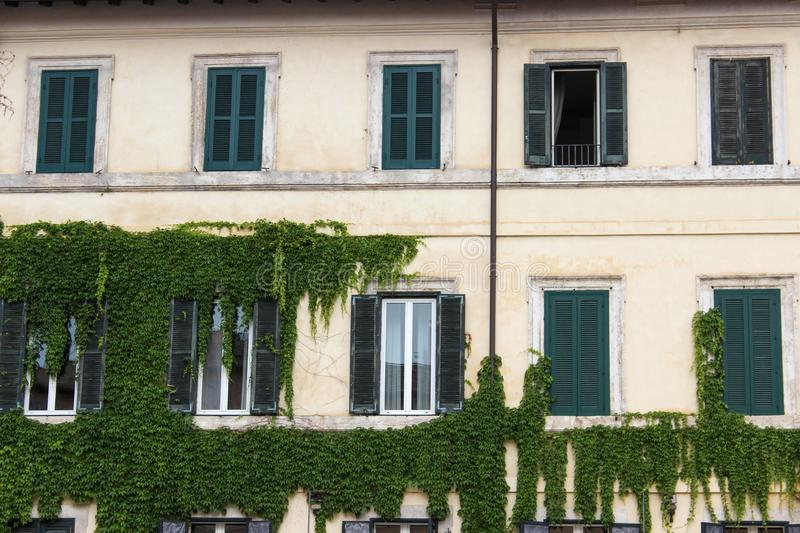 White building with natural wall. Travel, discover, holidsy, holiday, walk, front, open, window, door, closed, green, plant, nature, grass, beauty, facade royalty free stock photography