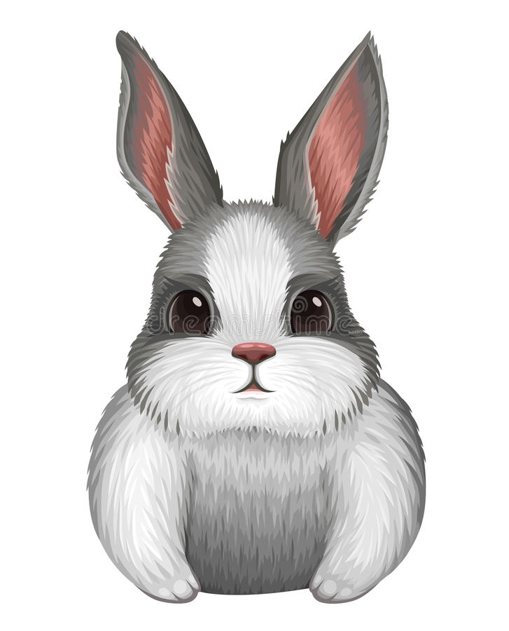 White bunny isolated on white. Vector illustration royalty free illustration