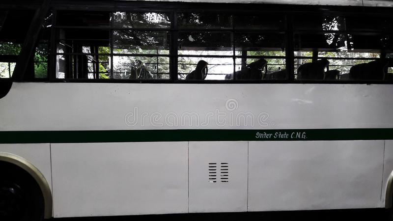 White bus side closeup image. Wheel, auto, adult, public, interior, steering, transport, car, tour, rapid, cab, tourism, male, profession, school, travel stock images