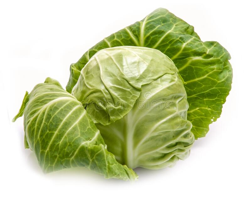 White cabbage isolated on a white background. A dietary vegetable rich in vitamins and minerals royalty free stock photo
