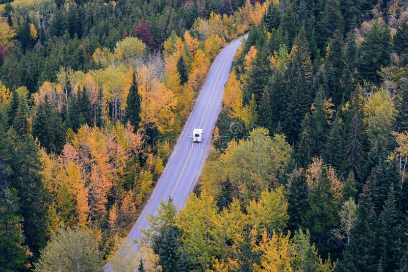 White Car Traveling Near Trees during Daytime royalty free stock photos
