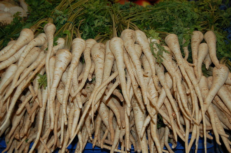 White Carrots stock photography