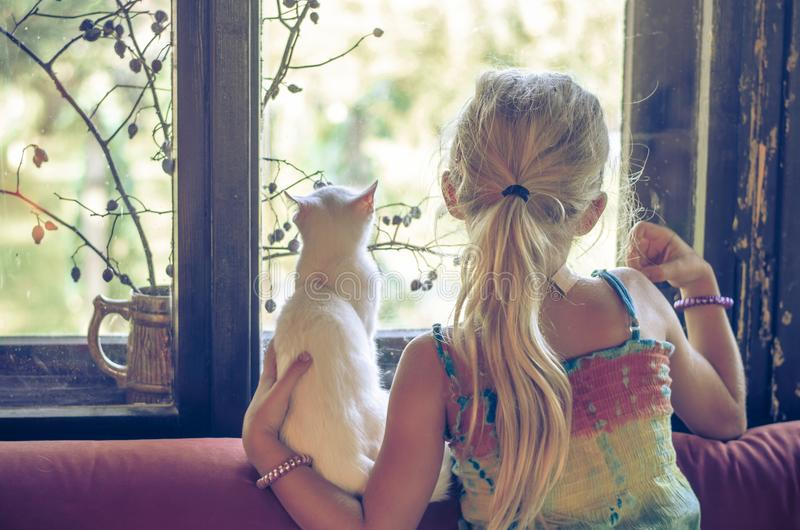 Girl with white cat looking through window stock image