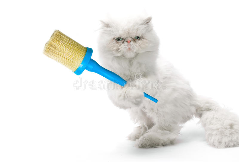 White cat-house painter with brush. On white background royalty free stock photos