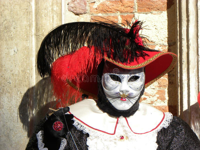 White cat male mask, Carnival of Venice royalty free stock images