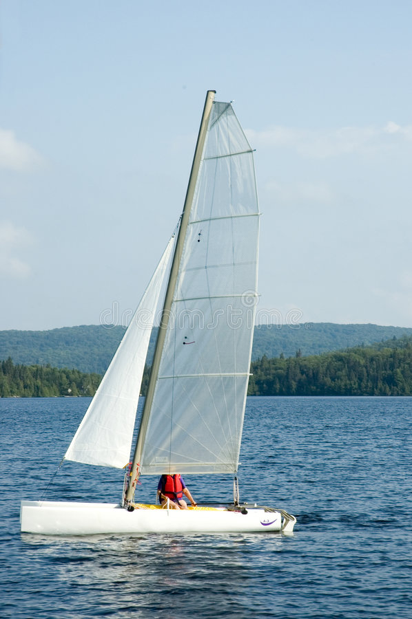 white catamaran zdjęcia royalty free