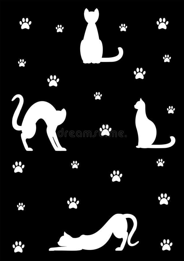 White cats on black background stock image