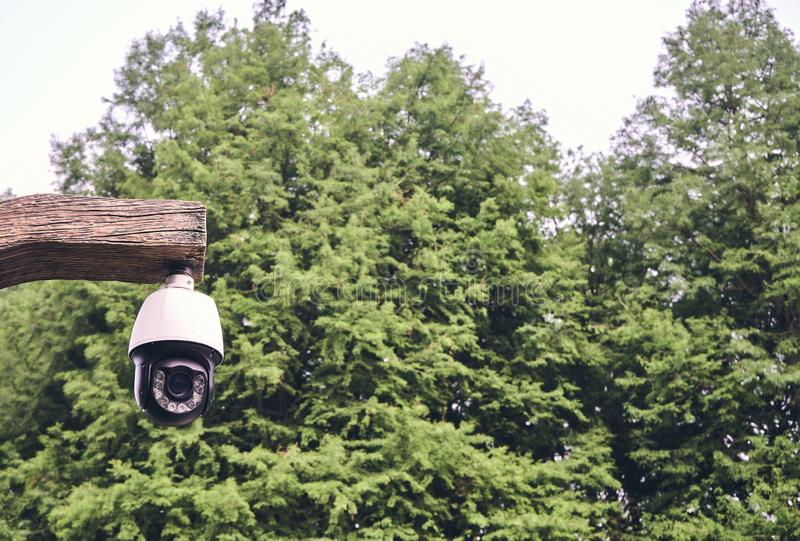 A white CCTV camera is in the forest royalty free stock image