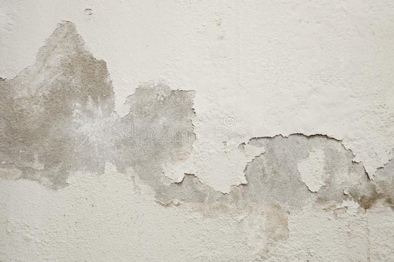 White cement wall with peeling paint. White cement wall with peeling paint caused by rising damp royalty free stock photo