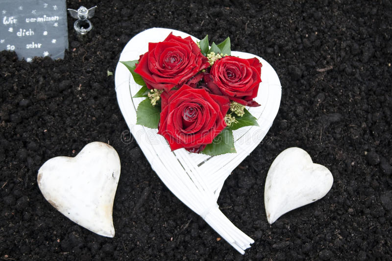White Cemetery heart with Red Roses. In Nature royalty free stock image