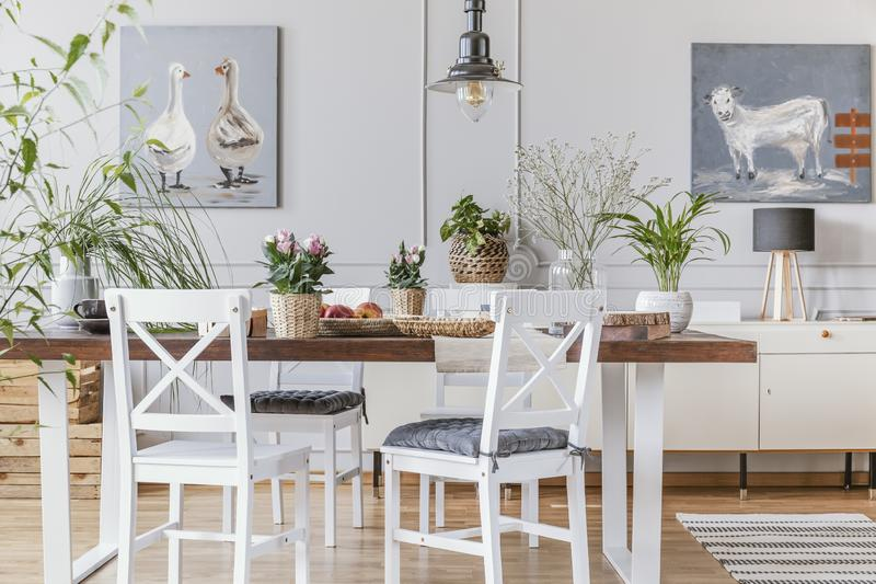 White chairs at wooden table with flowers in eclectic dining room interior with posters. Real photo royalty free stock photography