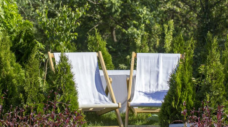 White chaise lounges from the cloth in the garden on a green lawn, fenced by thuja. Close up stock photography
