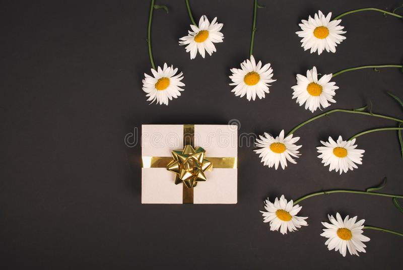 White chamomile with gift box with gold ribbon bow. Gift for birthday valentine or mothers day royalty free stock photo