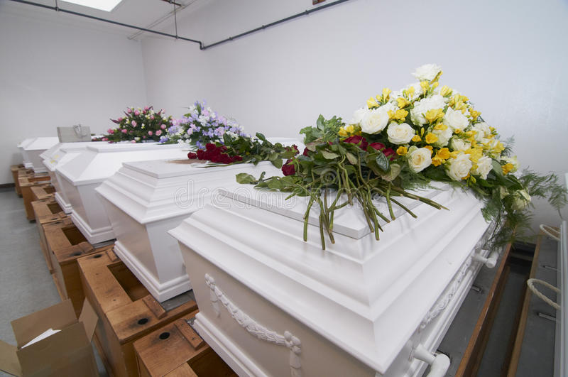 Download White chests in a row stock photo. Image of morgue, coffin - 28623346