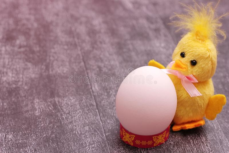 White chicken egg is located next to funny yellow fluffy toy chicken on grey background. The concept of the Easter holiday. Empty. Space to insert text stock photos