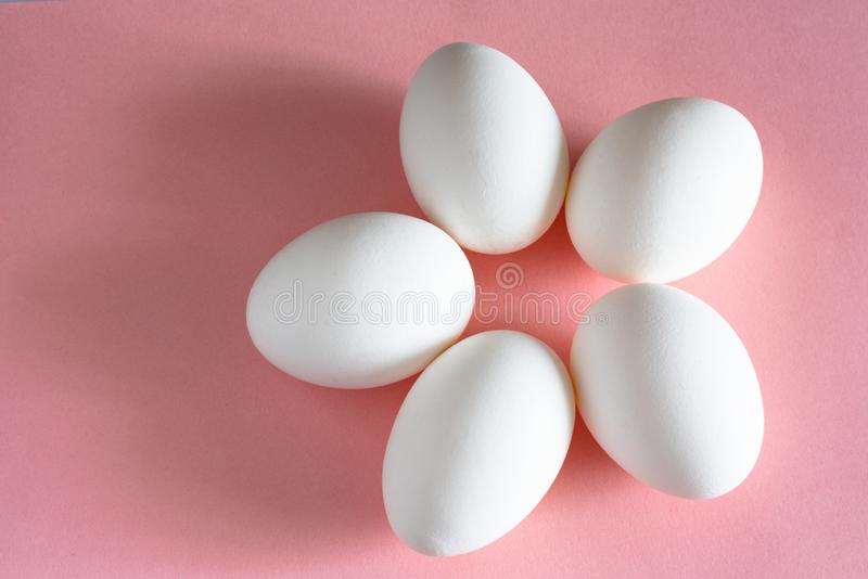 White chicken egg on pink pastel background top view. design and decor for Easter royalty free stock images