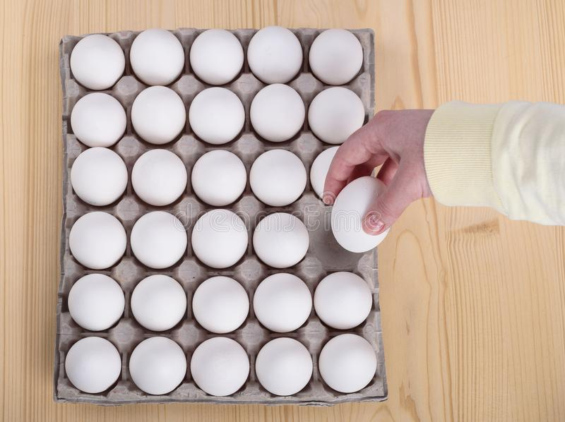 White chicken eggs in a cardboard package and one in a female ha royalty free stock photos