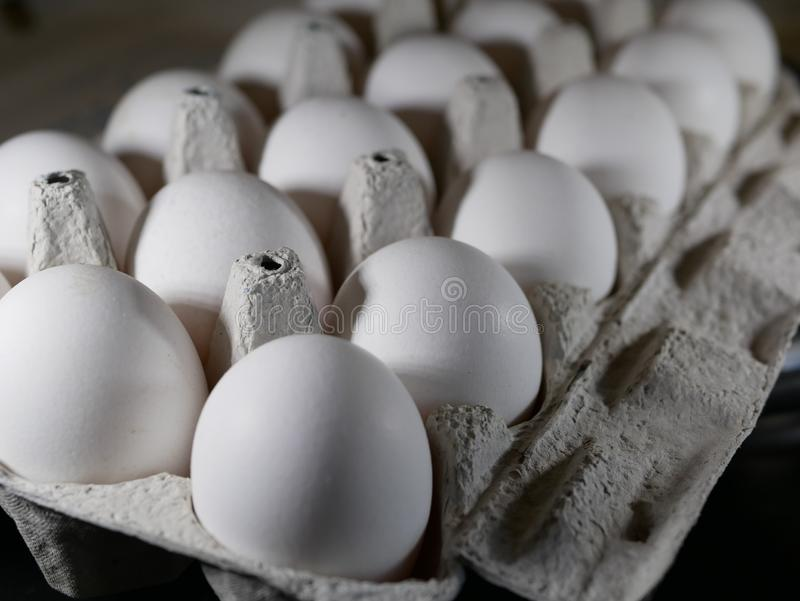White chicken eggs in a special container. natural food. health food. stock photo