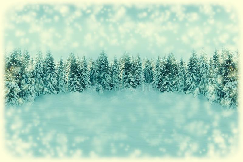 White Christmas greeting card background. Snowfall forest landscape with copy space. Winter landscape with fir trees covered with. Snow. Soft vintage toned stock image