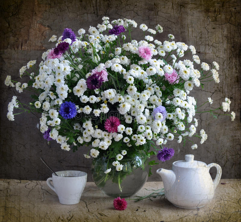 Free White Chrysanthemums And Coloured Corn-flowers Stock Photography - 16246062