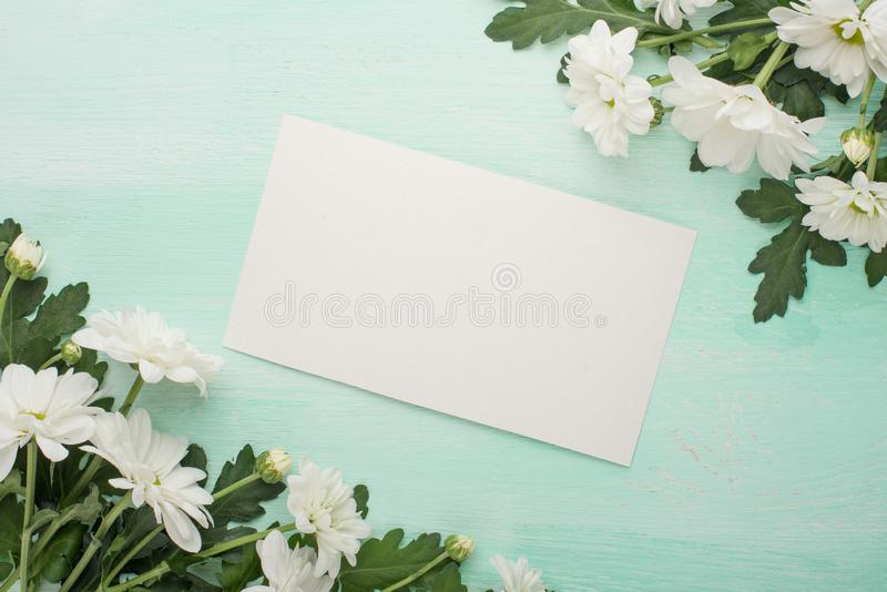 White chrysanthemums on a wooden background, with an empty space for writing or advertising royalty free stock photos