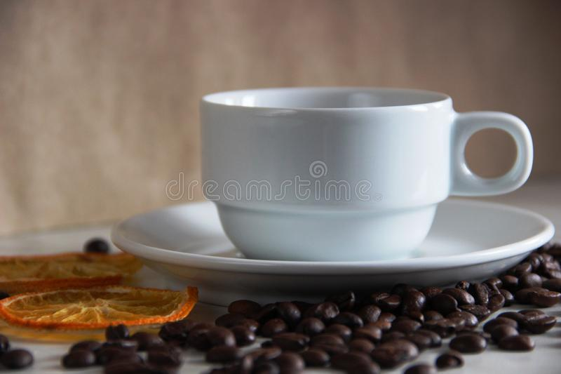 white classic cup and saucer, coffee beans and dried orange mugs. classic love of coffee and citrus royalty free stock photos