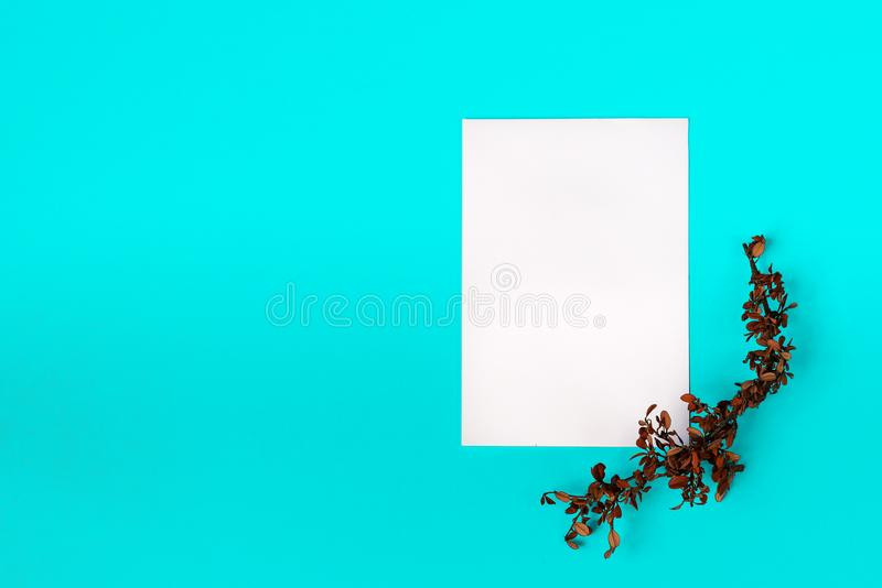 White clean sheet of paper with dry twig in bottom right corner. White clean sheet of paper with dry twig in bottom right corner on light blue background stock photos