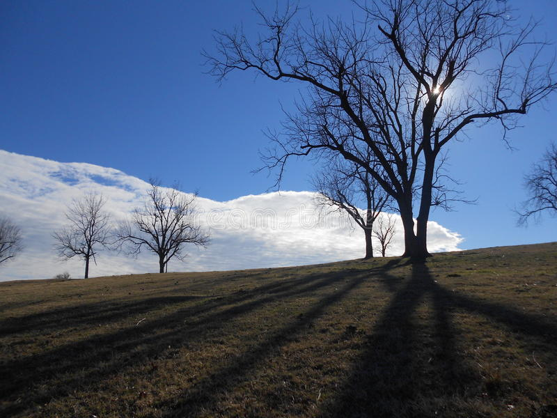 Large White Cloud and Trees at Hilltop, Blue Sky and Shadows. Receding huge white cloud cover looked like snow. It made for a dramatic photo over the hillside stock photos