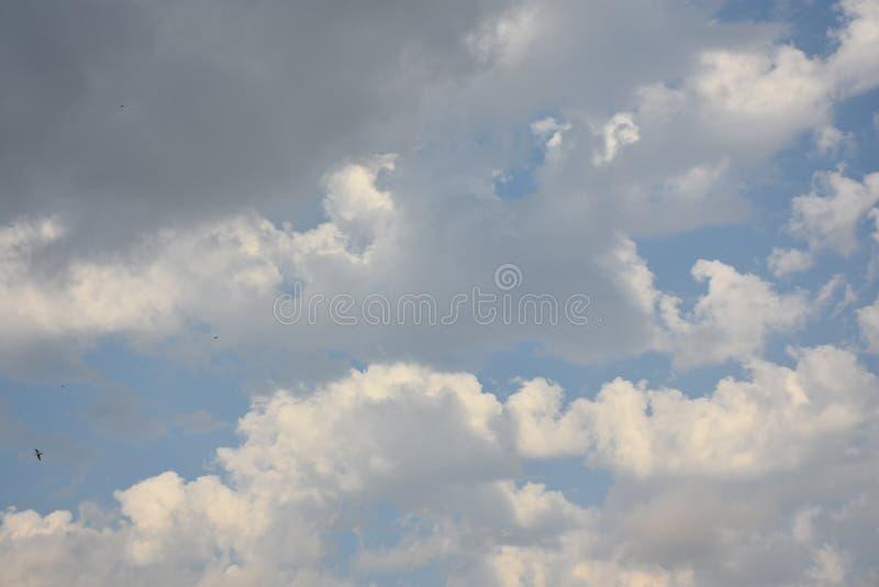 White cloud in dark blue sky stock photo
