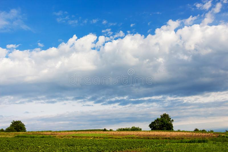 White clouds in the blue sky over the field in the summer_. White clouds in the blue sky over the field in the summer royalty free stock photos