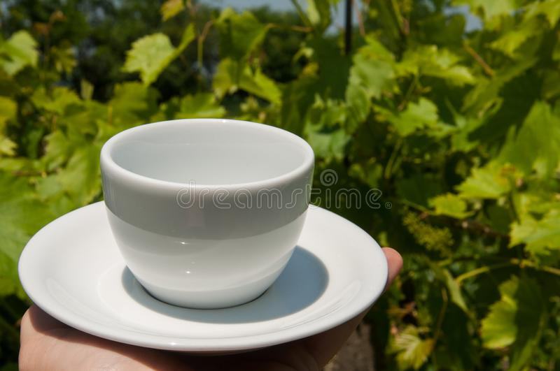 White coffee cup in hand in nature.Coffee time. Natural drink morning vintage breakfast mug hot table espresso wooden fresh aroma taste bean brown cafe closeup stock images