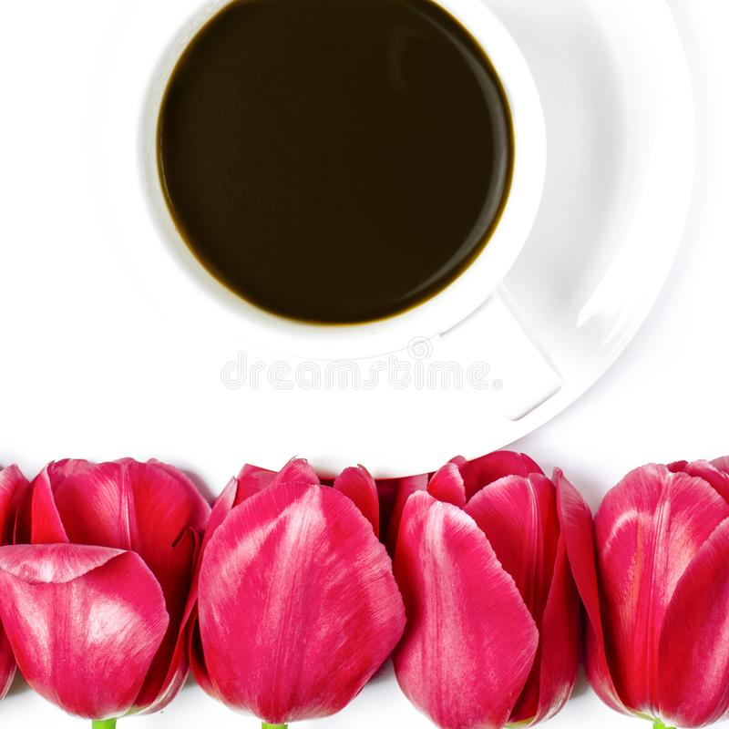 White coffee cup stands on a white plate with white background near multi-colored tulips royalty free stock photography