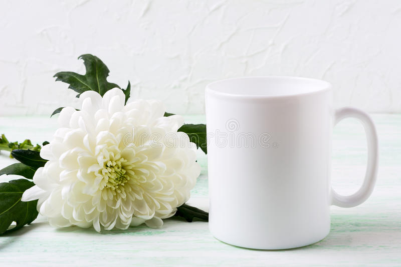 White coffee mug mockup with chrysanthemum royalty free stock photo