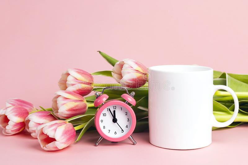 White coffee mug with tulip flowers and alarm clock on pink background. Space for text or design royalty free stock images