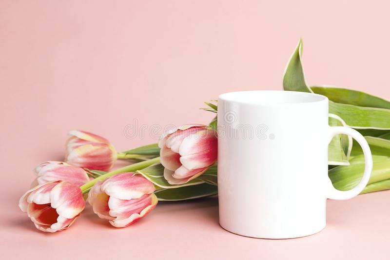 White coffee mug with tulip flowers on pink background. Space for text or design stock photo