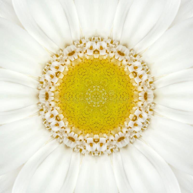 White Concentric Flower Center. Mandala Kaleidoscopic design. White Concentric Flower Center Macro Close-up. Mandala Kaleidoscopic design royalty free stock photo