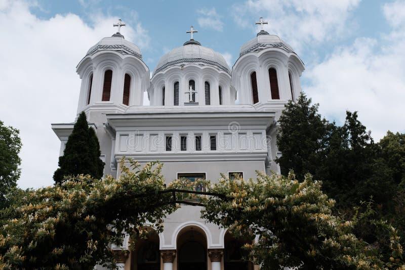 White Concrete Cathedral Near Trees stock photos