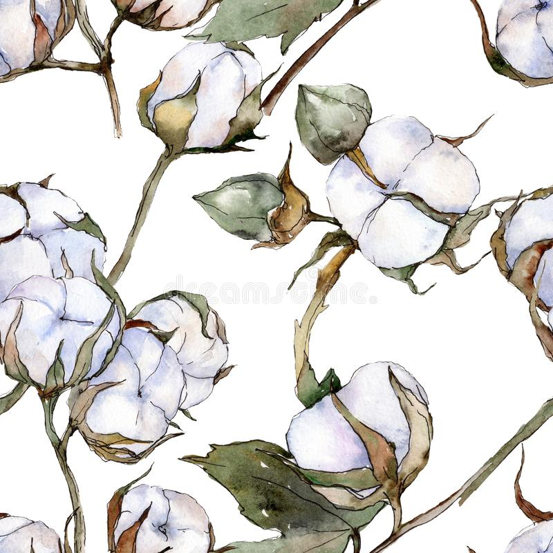 White cotton floral botanical flower. Watercolor background illustration set. Seamless background pattern. vector illustration