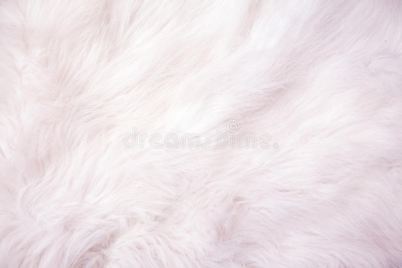 White cotton wool background texture. stock photos