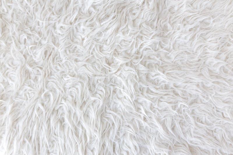White Cotton Wool Background Texture. Stock Photo - Image ...