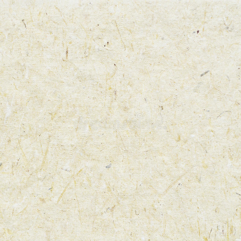 white craft paper texture stock photo image of recycled 89882932